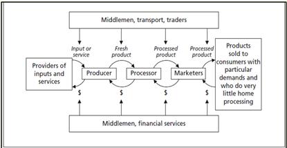Value chains schematic diagram
