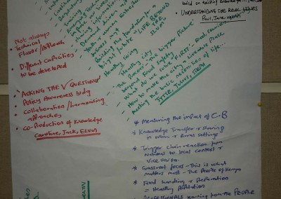 IIED_Workshop_Capacity_Building