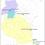 Laboratory capacity to diagnose Mycobacterium bovis in East Africa