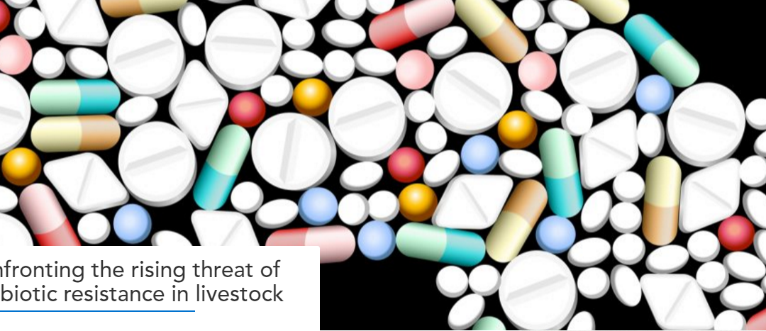 Confronting the rising threat of antibiotic resistance in livestock