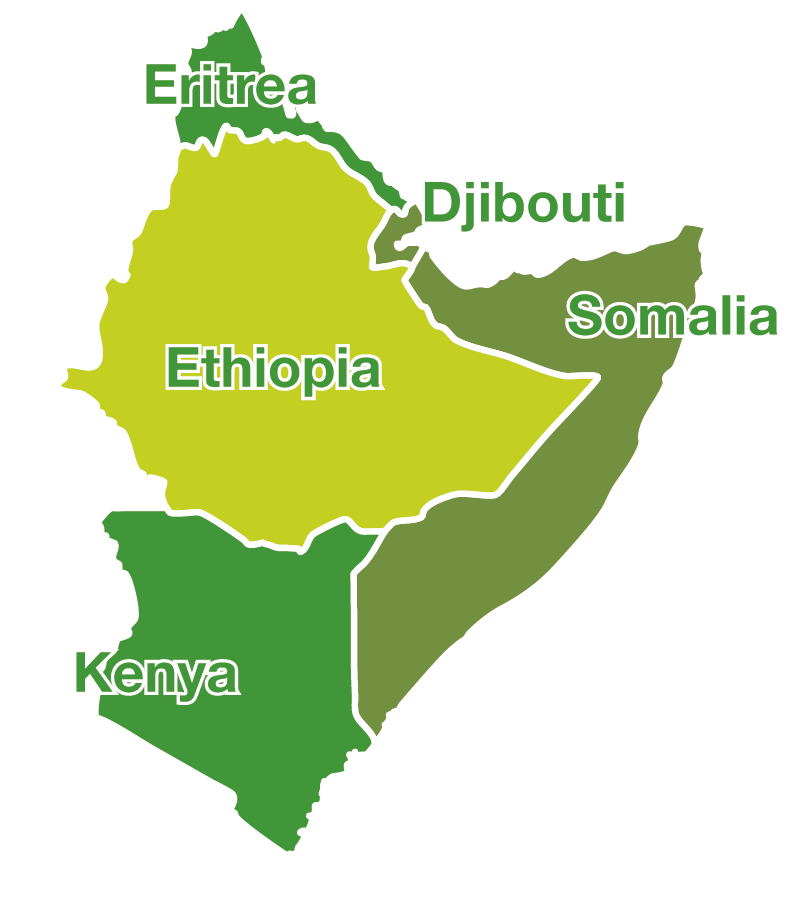 one health regional network for the horn of africa horn zoonotic